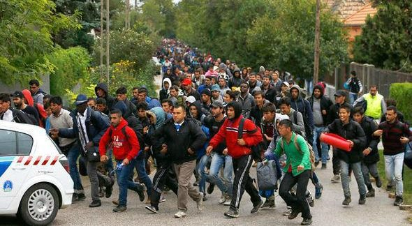The Pope, the Bishops, Muhammad and Migration