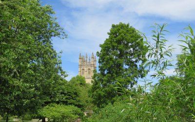 Sauron Comes to Middle England